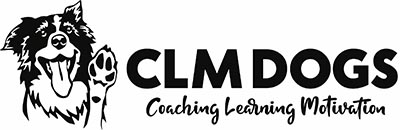 CLMDOGS, Coaching Learning Motivation